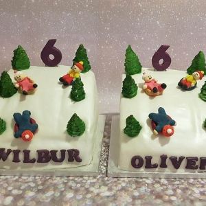 Tubing Themed Cakes